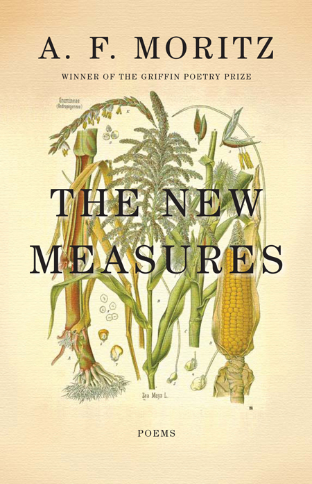 Book cover of AF Mortiz' The New Measures